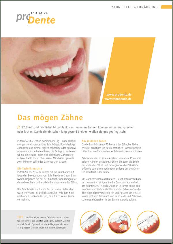 Broschüre Prophylaxe und Ernährung